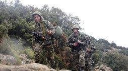 Algerian troops kill 16 al-Qaida affiliated militants