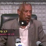 "Ethiopia : ""My aspiration is for Ethiopians to live in comfort,peace and dignity"" Says Sebhat Nega"