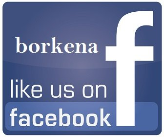 borkena like us on facebook