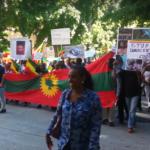 Ethiopian Immigrants March Against Brutal Regime : Seattle Weekly