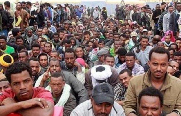 Ethiopian Migrants Detained in Zambia Released