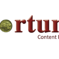 addis-fortune-logo
