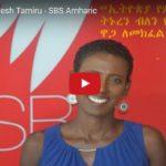 Asayesh Tamiru - SBS Amharic