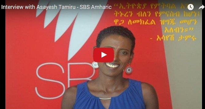 SBS Amharic : Interview with Asayesh Tamiru [Must Listen]