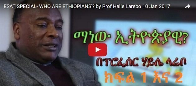Interview with Prof Haile Larebo part I & Part II [Must Watch]   Borkena Ethiopian News
