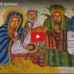 SBS Amharic : Ethiopian Christmas