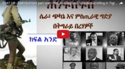 TPLF plots and killings -eye witness account from an early member