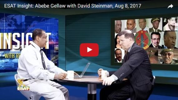 Why is David Steinman critical of TPLF government?