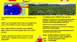 A fundraising to tackle Emboch from Lake Tana
