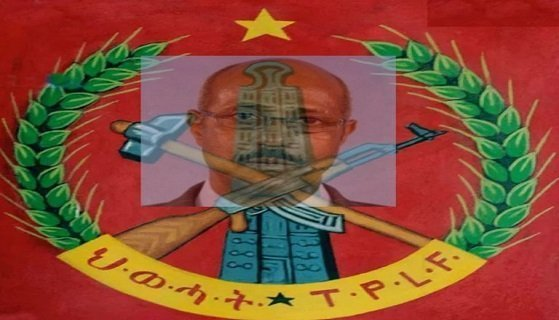 A Rejoinder to Seyoum Mesfin's Call to Arms to the People of Tigray