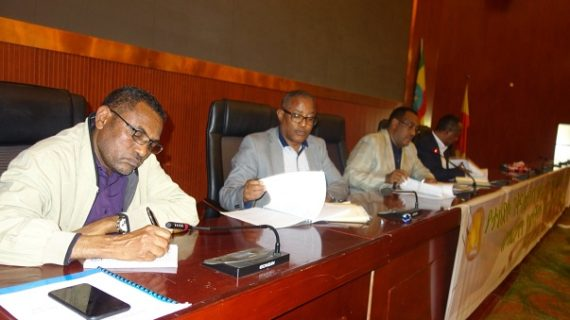 ANDM vows to defend the interest of Amhara people