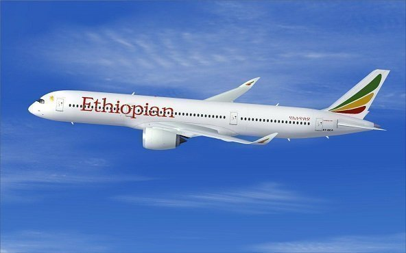 Ethiopian Airlines _ Privatization