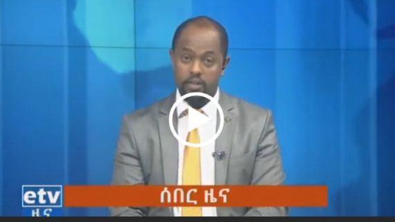 Privatization of Ethiopian Airlines, Ethio-Telecom and …