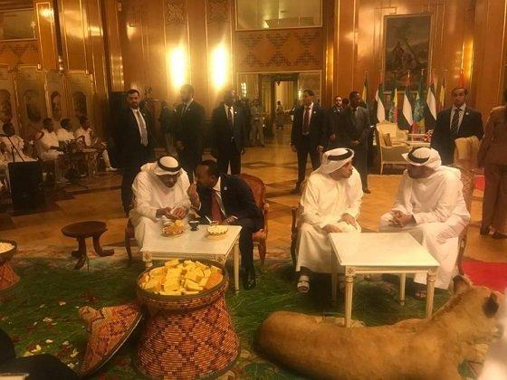 united arab emirates prince
